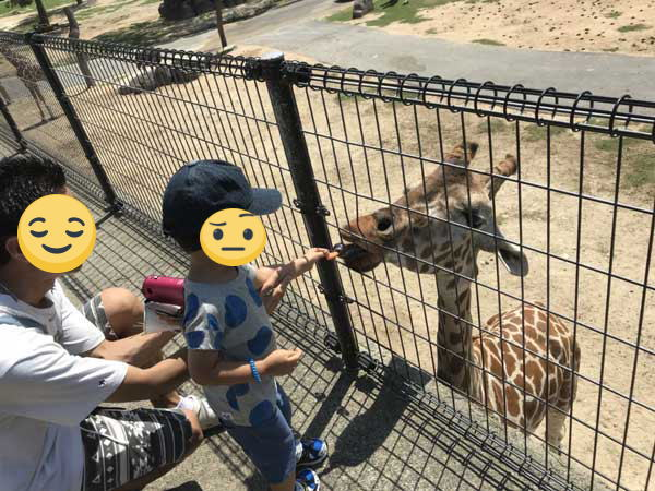 子供2人(2歳10ヶ月・7ヶ月)を連れて岡山から姫路セントラルパークに行ってきました!