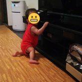 9ヶ月の次男のズリバイ、ハイハイ、つかまり立ち、伝い歩きは平均的?
