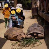 渋川動物公園に行ってきました!